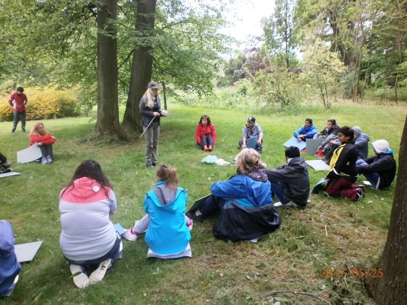 Lesní pedagogika ve Vlčicích